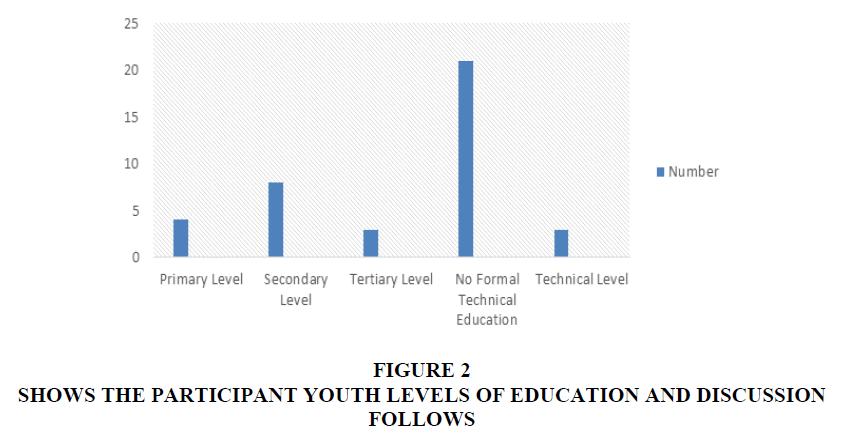 academy-of-entrepreneurship-youth-levels