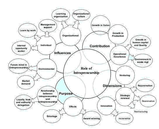 international-entrepreneurship-intrapreneurship