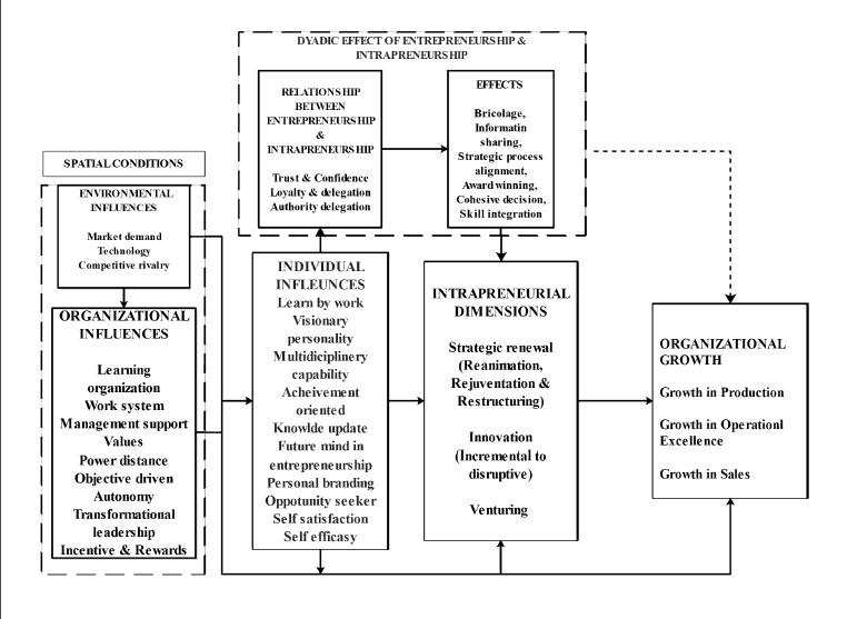 international-entrepreneurship-model