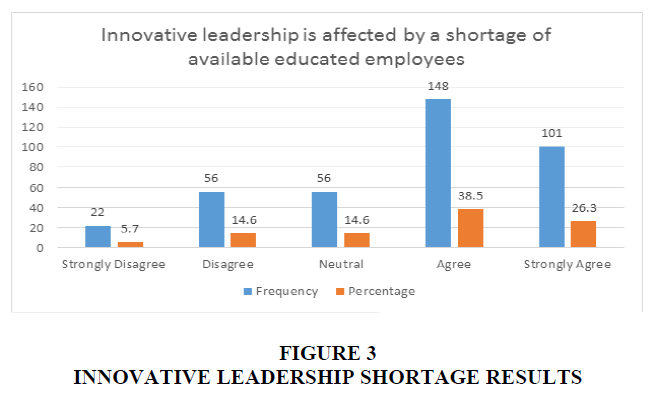 international-journal-of-entrepreneurship-shortage-results